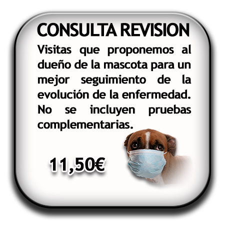 consulta revision
