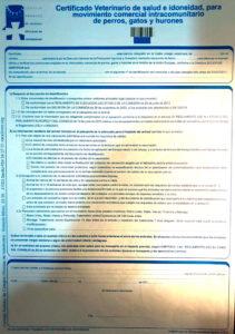 documento intracomunitario